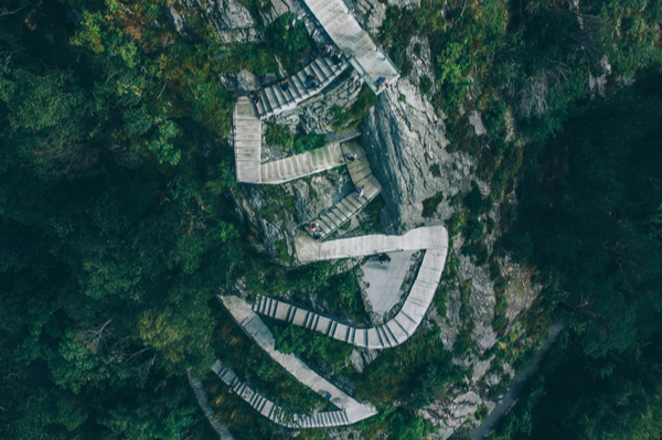 a stone staircase weaving up through trees on a mountain