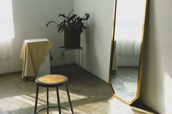a room with a stool, plant and mirror