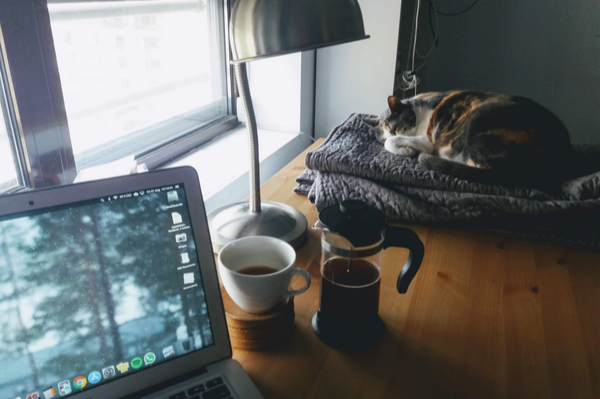 an image of a table which has an open laptop, a mug and a sleeping cat