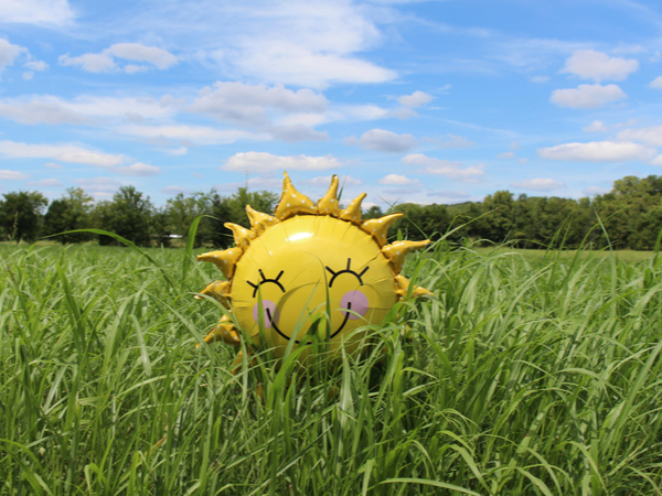 Sun-shaped balloon giving off good enerrgy in a bright field