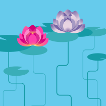 diagram of some waterlillies growing up out of water
