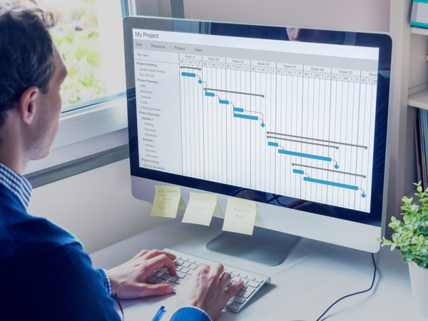 Person looking at a GANTT chart on a computer screen