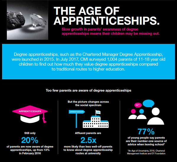 The Age of Apprenticeships Thumbnail