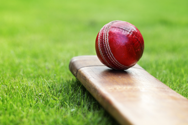 Cricket and leadership